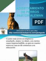 68310962-ADIESTRAMIENTO-DE-PERROS-PASTOR-ALEMAN.pdf