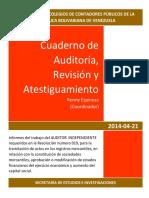 Auditoria Revisión y Atestiguamiento Resolución 019