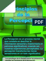 3 Principios de La Percepcion