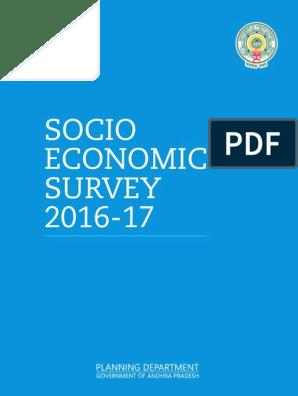 SOCIO ECONOMIC SURVEY 2016 17.pdf