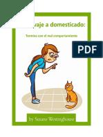 Educando a Tu Gato