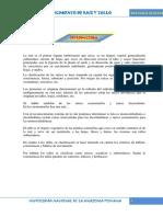 44666825-informe-4-de-botanica.docx