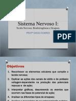 Tecido Nervoso. Bioeletro. Sinapses Psicologia