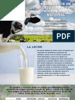 Produccion de Leche a Nivel Mundial y A