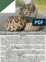 Treinamento Palestra Serpentes.