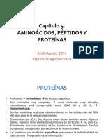 Clase 5. Aminoácidos, péptidos y proteínas