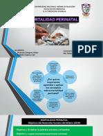 mortalidad-perinatal-1