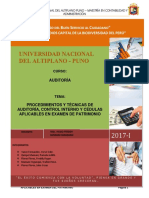 Auditoría de Patrimonio Monografia