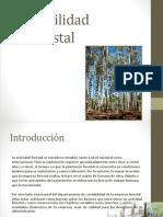 2. Consideraciones Conta Forestal