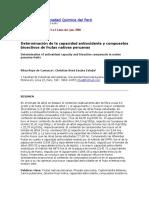 Determinación de la capacidad antioxidante y compuestos bioactivos de frutas nativas peruanas