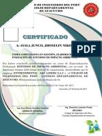 jhsoi.pdf