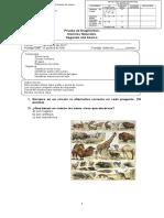 Prueba diagnóstico ciencias naturales 2° básico 2017.doc