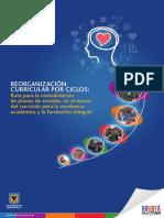 libro_reorganizacion_curricular.pdf