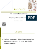 17-pares-craneales-1201130538583042-4.ppt