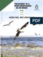 Aves Del Río Uruguay