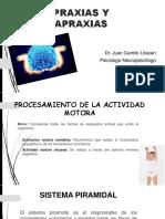 praxias-150515223252-lva1-app6891.pdf