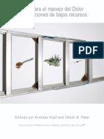 GuidetoPainManagement_Spanish.pdf