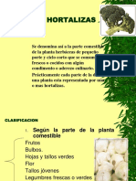 Clase.hortalizas
