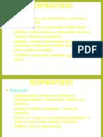 Tema 2 Respiracion