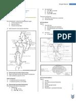 Enfermedad Cerebrovascular de Causa Extracraneana