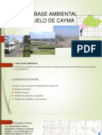 Linea Base Ambiental de Cayma