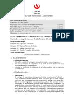 SV41_MA462_L2_TRUJILLO.doc