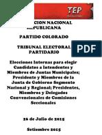 Anr Informe Final Municipales 2015