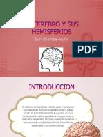 el cerebro y sus hemisferios.pptx