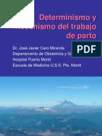 08. Determinismo Del Parto
