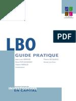Guide pratique LBO.pdf