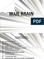 Blue-Brain.ppt