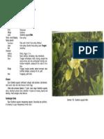 1-133.pdf