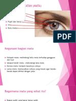 Indera Penglihatan (Mata)
