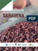 Resumen Ejecutivo Saravena