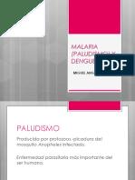 Malaria y Dengue