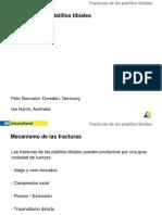 Fx.platillo Tibial[1]