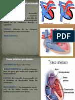 EMBRIOLOGIA EXPOSICION (1)