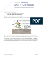 Introduction to Plant Processes (1)