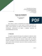 Ensayo de Consolidación Hidalgo