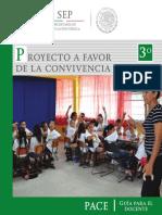 PACE docente.pdf