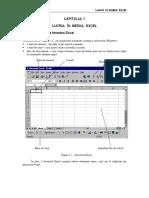 Capitolul 1 – Lucrul in mediul Excel.pdf