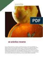 Angelo Corvitto - Un práctico recurso.pdf