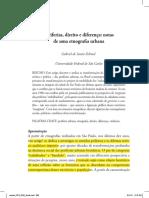 Gabriel Feltran.pdf