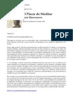 El Palcer de La Meditación (Fragmento) - Juan Manzanera