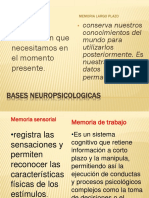 Bases Neuropsicologicas