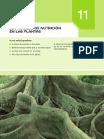 nutri.pdf