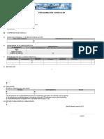 Formato de Programacion Curricular 2017