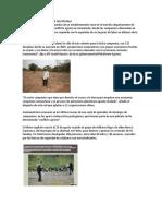 Problemas de Tierras en Guatemala