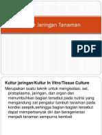 Materi Kultur Jaringan Tanaman (1)
