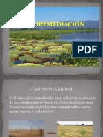 fitoremediacion(1)